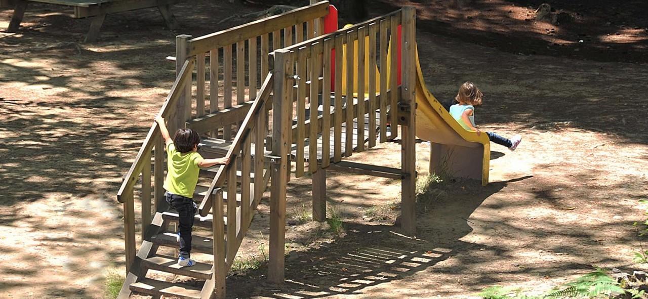 Slides 7